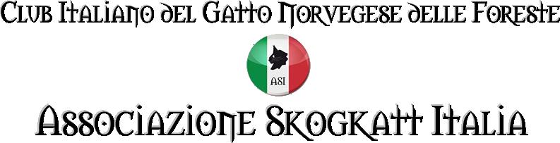 club italiano del gatto norvegese delle foreste